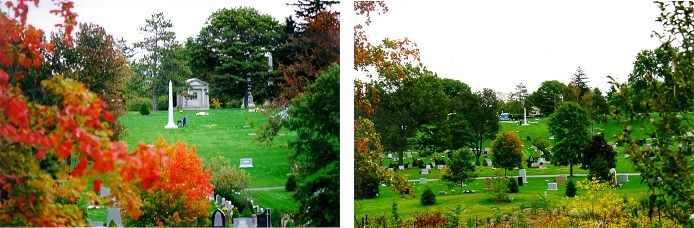Cedar Hill Cemetery Provides A Range Of Services To Commemorate The Deceased Cedar Hill Cemetery